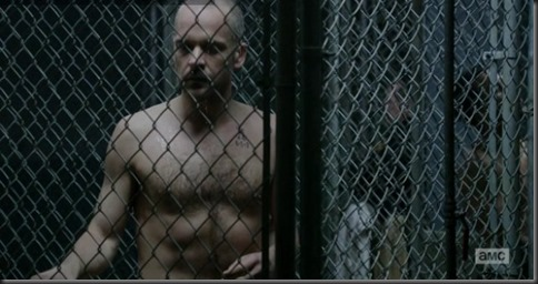 Peter_Sarsgaard_shirtless_06